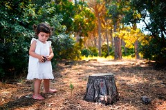 """207/365 - """"Family Holidays"""" nr.26 (Luca Rossini) Tags: wood trees portrait baby playing nature girl pine project blog kid log eyes alone child cone candid sony daughter theme 365 familyholidays rx1 365daysofrx1onecameraonelens12projects"""