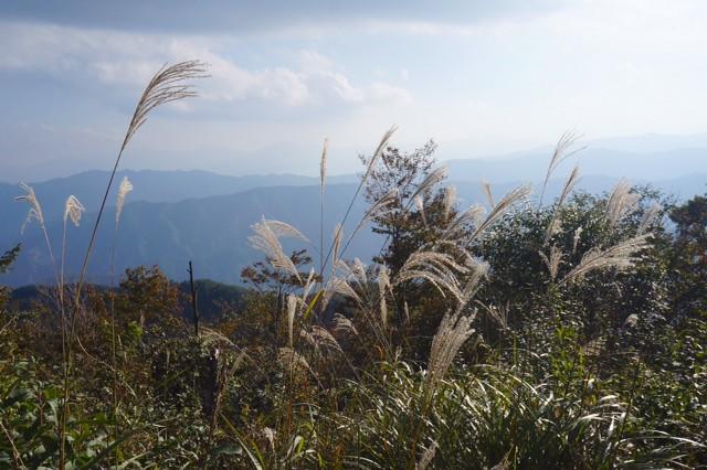 鋸山~大岳山~御岳山2