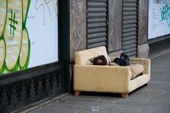 e dall'alba al tramonto (Antonio_Trogu) Tags: street sleeping man paris france strada streetphotography couch uomo francia divano iledefrance ruederivoli parigi dorme antoniotrogu