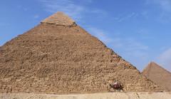 Eternity (TablinumCarlson) Tags: africa leica 2 day pyramid von egypt clear explore cairo camel afrika eternity pyramide dlux gizeh weltkulturerbe grose chephren kairo  explored ewigkeit alqhira aldschza  ilgza