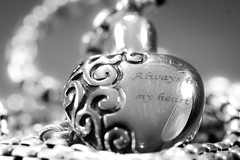 9/365: Always In My Heart (KristyR929) Tags: bw silver blackwhite jewelry 365 52 52weeks project365 msh0614 365daysproject themacrohousehold 52weekproject macromondays nikkor105mmf28gvrmicro memorialjewelry macrounlimited 52weeksofphotography nikond7100 bwmaniacv2 smallerthan2inches5cm msh061412