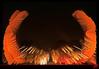 Louis XIV et Bernar Venet en folie (mamnic47 - Over 8 millions views.Thks!) Tags: versailles placedarmes statuelouisxiv img8568 effetphotoshop effetsdelumières expositionbernarvenet
