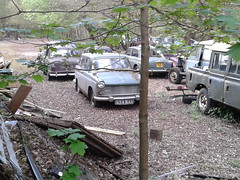 Cache of classics in Crowborough (2) (SurreyWanderer) Tags: classic abandoned austin riley sussex classiccar singer morris landrover hillman bmc daimler wolseley rootes crowborough