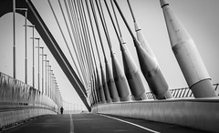 The Runner (80D-Ray) Tags: bridge blackandwhite bw architecture nijmegen river waal canonef70200f4l deoversteek