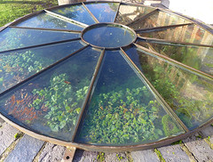Well (Tiggrx) Tags: water glass spring pub well cover round herefordshire source publichouse bringstycommon liveandletlive