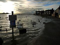 Don't Get Stranded (Worthing Wanderer) Tags: winter sussex coast bosham december moody flood west