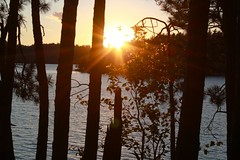 golden rays (ailie*) Tags: trees sunset sky sun sunlight lake black water leaves islands golden evening waves glow shine bright silhouettes calm rays ailie temagami