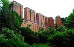 Klosterruine in Hude (♥ ♥ ♥ flickrsprotte♥ ♥ ♥) Tags: alt ruine oldenburg mauern niedersachsen hude abtei klosterruine flickrsprotte hrontour