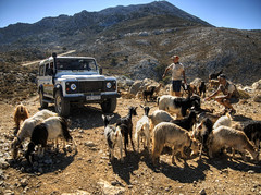 SafariClub Crete and goats (neilalderney123) Tags: 2016neilhoward goats crete landscape 4wd landrover olympus greece