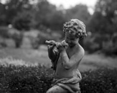 NewVue_101816_05 (Mark Dalzell) Tags: newvue 4x5 view camera film kodak tmax 400 xtol ringwood state park nj fpp cherub statue