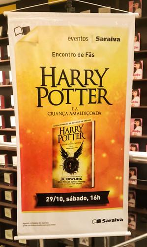 Encontro-Harry-Potter-Saraiva-Rio-Preto-24.jpg