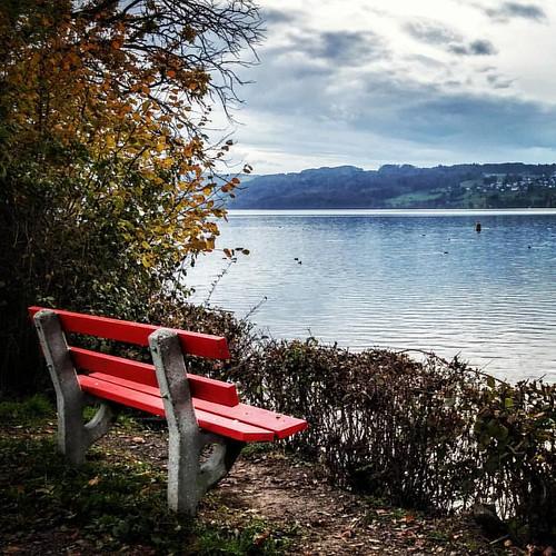 Hallwilersee  #Switzerland #lake #view #autumn #sitzbank #inLoveWithSwitzerland #iloveswitzerland #cloudscape