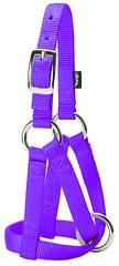358152PU (Sharp Show Supply) Tags: 358152pu goat halter purple