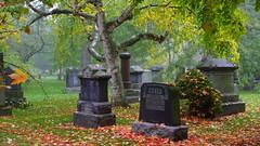 095crpshsatfwl (citatus) Tags: fall colours colors mount pleasant cemetery toronto canada afternoon 2016 pentax k3 ii