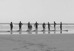 Introduce surfing (Aurlie Lb) Tags: surf surfing beach maroc morocco