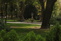 Tsar-Simeonova gradina, Plovdiv (nikolaylozanov8006) Tags: tree outdoor plant garden plovdiv foutain grass bulgaria thrace park