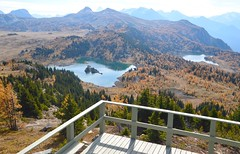Sunshine Meadows lookout (Krasivaya Liza) Tags: fence friday sunshinemeadows alberta ca canada