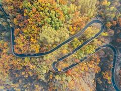 (Great Han) Tags: autumn  october  4 phantom dji   drone   beijing china cn