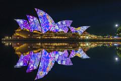 Blue (merbert2012) Tags: red vividsydney australia sydneyharbour sydneyoperahouse reflection photoshop nikond800 friends fun reisen travel cityscape city lightshow longexposure