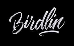 Birdlin.
