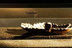 Toshiba (joeldinda) Tags: home interior michigan mulliken livingroom 3297 september decorations lightandshadow shadowplay 2016 nikon nikond500 d500