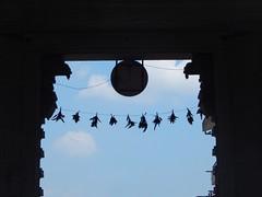 Sringeri Sharada Temple Photos Clicked By CHINMAYA M RAO (23)