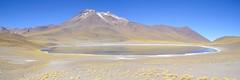 Laguna Miñiques (monto84) Tags: américa américadelsur chile desiertodeatacama fotografíapaisaje lagunamiñiques lagunasaltiplánicas regióndeantofagasta reservanacionallosflamencos