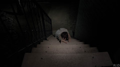 Let Me In (danielledufour430) Tags: halloween october scary spooky horror woman stairs night dark terrifying crawl creep grab reach whitedress dress ominous desperate sonya6000