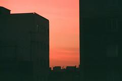 (maryam_mzadeh) Tags: light نور canonae1 film agfa sunset