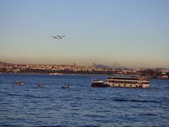 Estambul (pattyesqga) Tags: estambul istambul turkey turquia turkiye viaje travel trip europe city mar bosforo