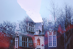 19 (zakchalmers) Tags: france french town building house bird flock fly tree light overlay layer surreal blue dark canon eos t2i mutual benefit
