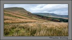 Brecon Beacons (stagenutuk) Tags: breconbeacons wales autumn fall nikond7200 nikon1024mmlens hills mountain hilly mountainous