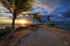 Sunrise at 12 mm (Fraggle Red) Tags: florida miamidadeco miami coralgables mathesonhammockcountypark countypark mathesonhammock biscaynebay rocks morning sunrise clouds adobelightroomcc adobephotoshopcc20155 canoneos5dmarkiii 5d3 5diii sigma1224mmf4dghsmart