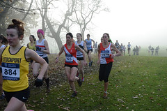 DSC_3423 (Dave Pinnington Photography) Tags: european womens xc trials sefton park liverpool 261116 photos by dave pinnington