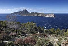 Sa Dragonera Mallorca (Dmitriy Sakharov) Tags: sa dragonera mallorca spain balearic island islands travel