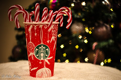 Christmas Decorations 05 December 16 1 (Helen Mulvey) Tags: starbucks candy cane decorations christmas bokeh depth field dof red star tree nikon d5100 indoor still life tabletop