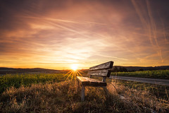 sit down and enjoy (Lena Held) Tags: sonnenuntergang sonnenlicht sonnenschein sonnenstrahlen blendenstern abend abendsonne abendrot bayern deutschland bavaria germany german oberpfalz travel world welt canon 6d vollformat 1635 f4 volor color colored colors yellow orange green blue black withe autumn herbst farben farbig sky cloud clouds natural nature wood woodland field forest light lights sunny sunshine sunlight daylight today daily sundown sunrise sunset afterglow glow glowing glowingsky landscape scape land squre square squareformat format wildlife life