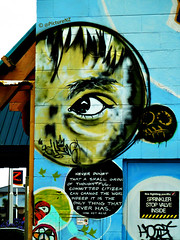 An Eye on Humanity (Steve Taylor (Photography)) Tags: door newzealand christchurch streetart eye face birds sign wall plane hair graffiti mural brighton pacific garage tag canterbury sprinkler madness nz 1984 bubble southisland inside z firefighting bigbrother bombs tagging pupil newbrighton stopvalve magaretmead