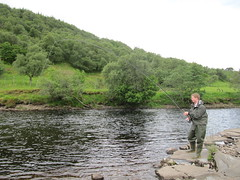 Edward Oldham has not fished the Oykel for 3 years, but his skill is still pretty sharp when it comes to taking a Grilse;  This was his second this morning, the Island pool does it again!