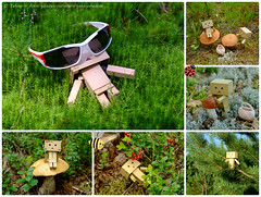 On vacation... (tehhyvredina) Tags: summer forest relax mushrooms  danbo   photogame    danboard