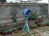 Garden 2013 - 46 - Stealth Kitty (marmaset) Tags: cats yard cat garden kitty birdhouse hidden stealth