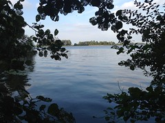 View on Loosdrechtse Plassen from De Vier Elementen (TijsB) Tags: camping lake nature utrecht rowing fkk loosdrechtseplassen gaycouple naturists devierelementen tijsjoan naturistenvereniging