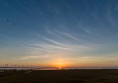 (Digital_trance) Tags: sunset sea bird nature windmill sunrise canon ship taiwan sigma  seafood oyster  lanscape bif        ocea      40d    canon40d 5dmarkii 5d2 5dii canon5dmarkii eos5dmarkii canon5d2