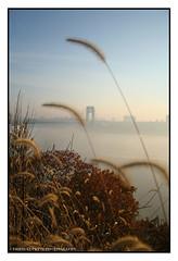 The George Washintgon Bridge (Chris Jude Lupetti) Tags: new york nyc bridge art photography george washington fine bridges fineartphotography fineartphotographs chrislupetti flickrartphotographs