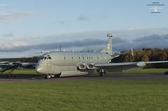 Nimrod in the autumn sunshine (Aviation-Pictures.co.uk) Tags: raf bac nimrod bruntingthorpe