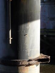 Duck pillar (Nekoglyph) Tags: sunlight water face metal river rust shadows legs cleveland pipe beak collar teesside tees newportbridge