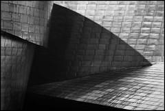 Guggenheim Museum Bilbao 11 (roland weegen) Tags: analog blackwhite sigma1224mm fujineopan1600 agfapanapx10