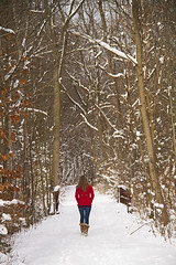 CCM Nature Trail (Matt Champlin) Tags: life winter red nature canon woodland coat calm wife stace forward pristine contrasting womaninred 2013 womaninredinwinter