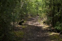 Truganini Track