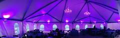 Purple Lighting - Chandeliers - Tent Lighting - Vineyards at Chappel Lodge